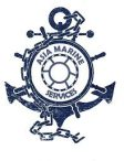 Asia Marine Services Project 2